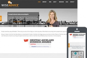 Wise Advice - Websites for Accountants by Bizink